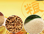 China Grains Market Weekly Report